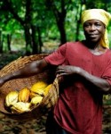 Large-scale agriculture operations should recognise the interests of small-scale farmers.