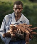 Can cassava beat climate change in Africa?