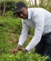 Making agriculture fashionable again: Young entrepreneurs are upgrading the image of African farming